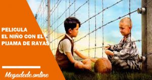 Ver película el niño con el pijama de rayas online